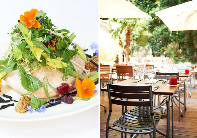 restaurant,bruxelles, gastronomie, chef, cuisine, terrasse, fleurs