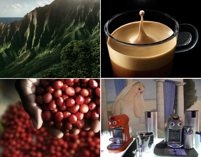 café, grand cru, Nespresso, Hawaii, Kona, soie, fruité, crema