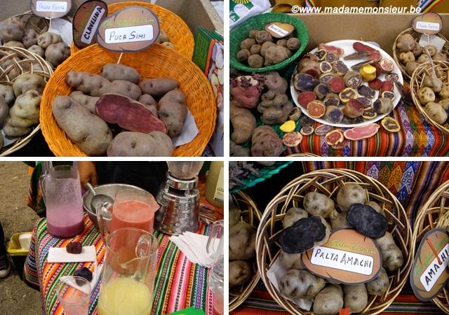 ocas,papas nativas,pérou,lima,cuisine,tubercule,pomme de terre
