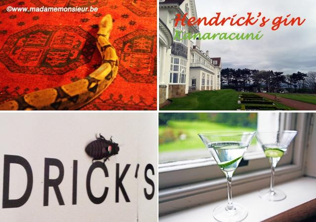 concours, gratuit, gin, hendrick's, ecosse, Amazonie, rare