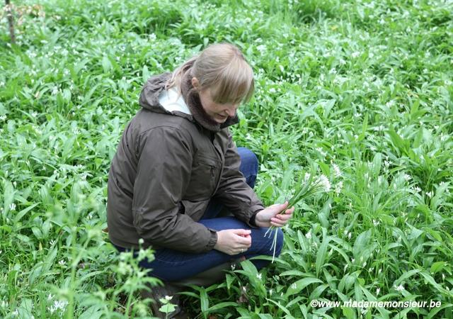 cueillette, guide nature, cuisine sauvage, reportage, namur, lionel rawet, wallonie, herbes, plantes, botanique
