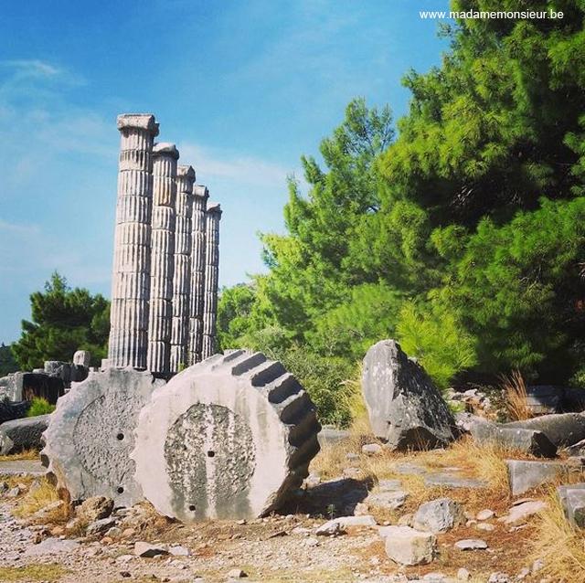 turquie,voyage,priene,archeologie,romain,visite, priene