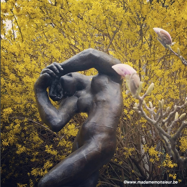 voyage,jardin,musée,sculpture,gianadda,suisse,art, rodin