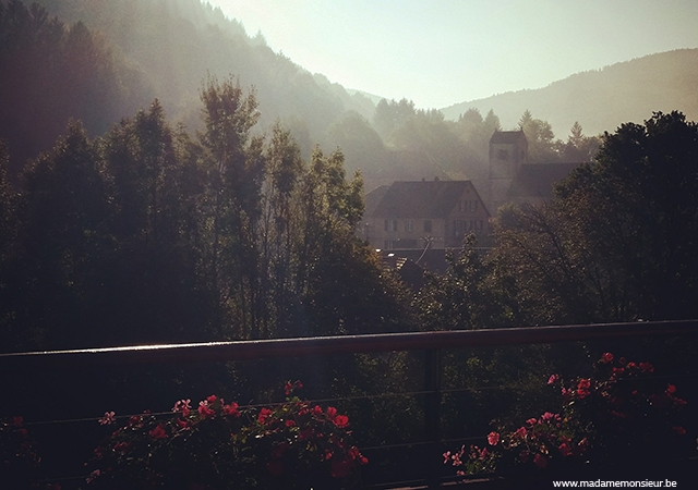 alsace,france,hôtel,resto,brasserie,spa,vin,coup de coeur,weekend, nature, suite